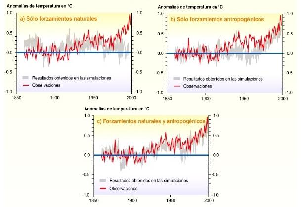 Simulaciones y observaciones de forzamientos de temperatura pp